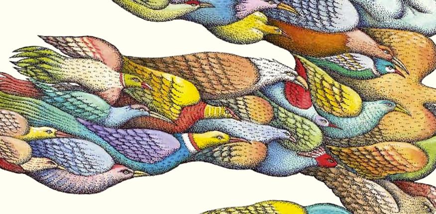 Seamos pájaros. Peter Sís, por Francisca Pageo - Détour
